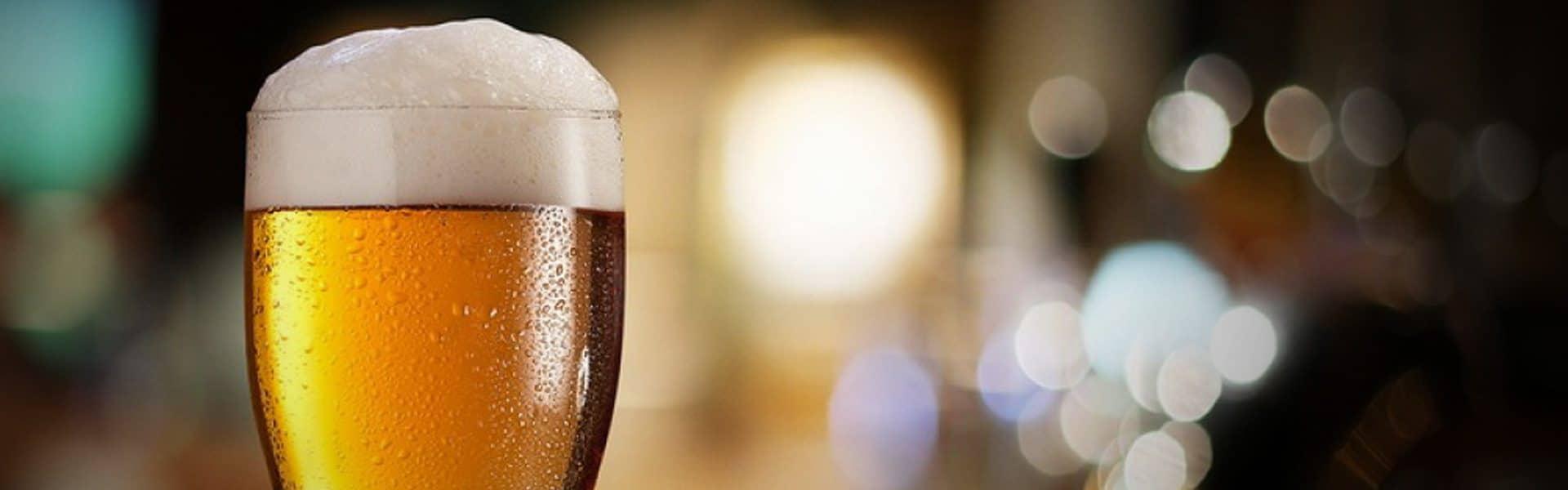 blog-21-livros-para-entender-sobre-cerveja-e-fazer-a-sua-propria-2