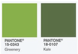 blog-world-importados-cor-pantone-2017