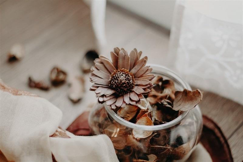 Imagem de flores e folhas secas